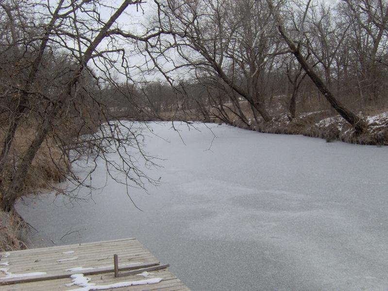 Click image for larger version.  Name:Driveway from lake 003.jpg Views:204 Size:92.8 KB ID:63912