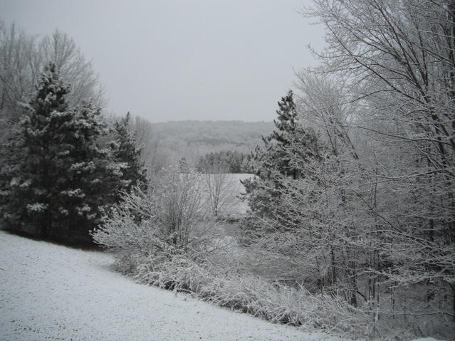 Click image for larger version.  Name:first snow 2012 002.jpg Views:88 Size:57.3 KB ID:183365