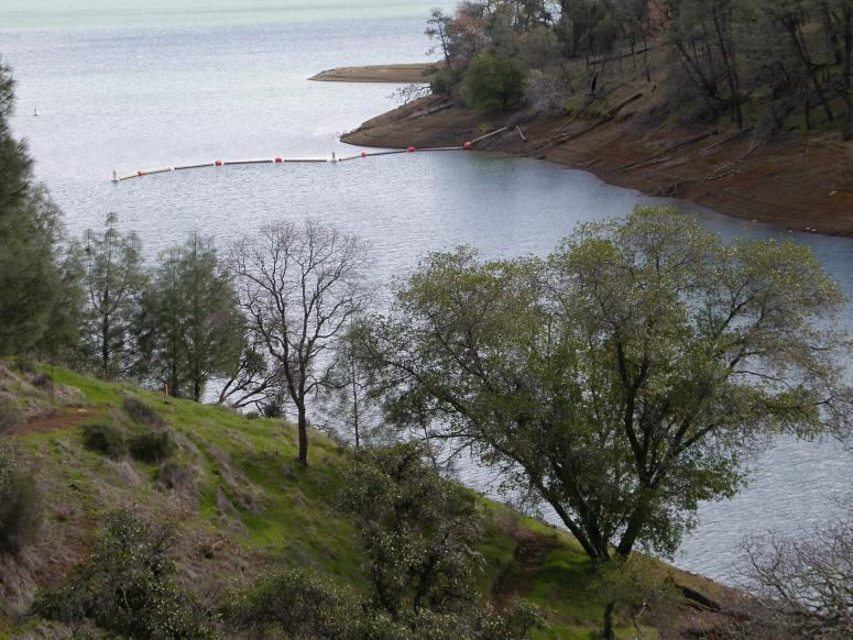 Click image for larger version.  Name:Lake Berryessa 0003.jpg Views:283 Size:97.2 KB ID:2174
