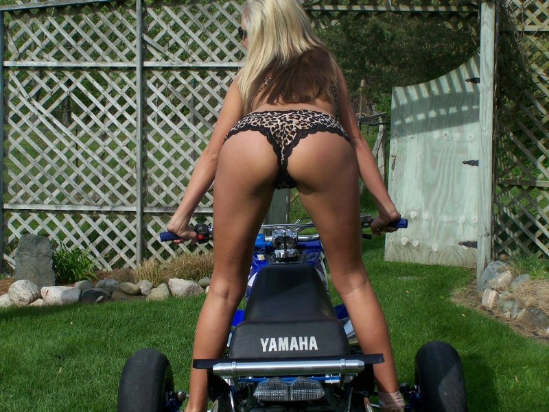 Click image for larger version.  Name:shee rear (2).jpg Views:117 Size:284.2 KB ID:75725